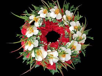 Cream Hibiscus Wreath – Silk Flowers