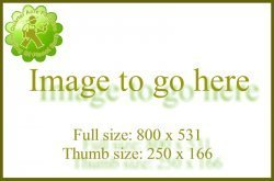 image to go here 1