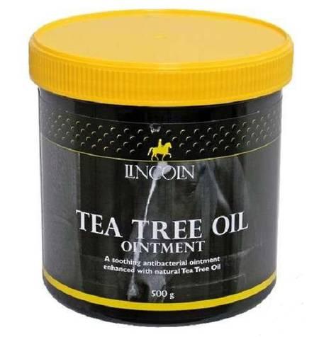 Tea tree oil pills