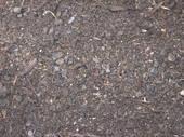 Daltons Compost Plus
