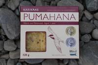 Pumahana (Black fronted tern, tarapirohe)