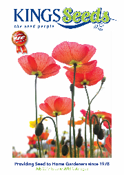 Kings-Seeds-17-18-Catalogue-Product-Image-364